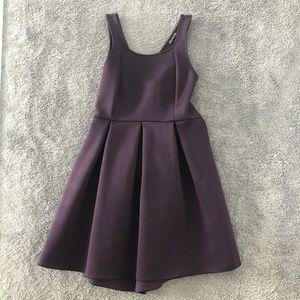 Express Mini Dress in Plum Purple